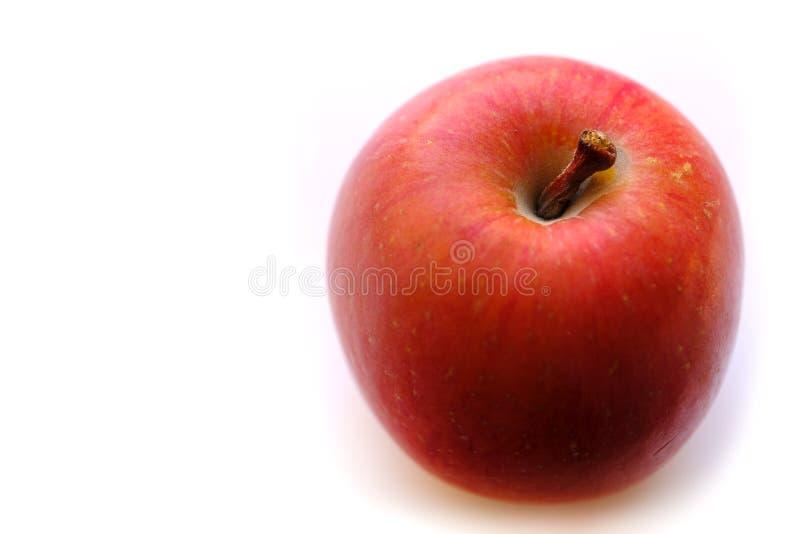 Простое штейновое красное яблоко, белое стоковые фото