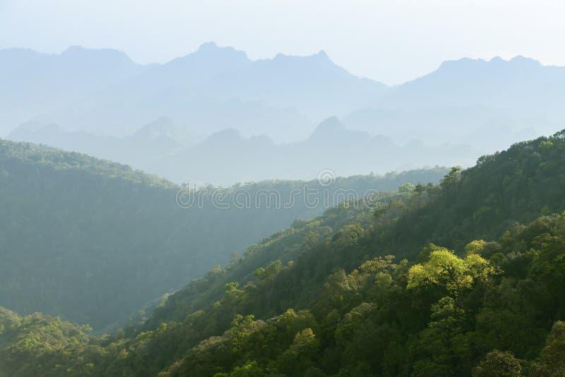 Простые слои горы, зеленой предпосылки природы стоковые изображения rf