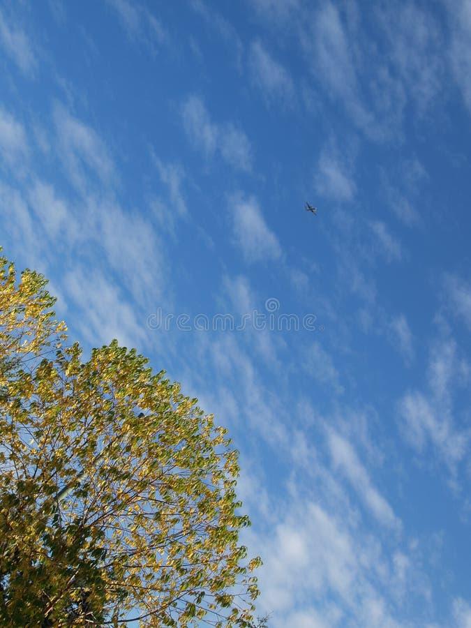против вала голубого неба стоковые изображения rf
