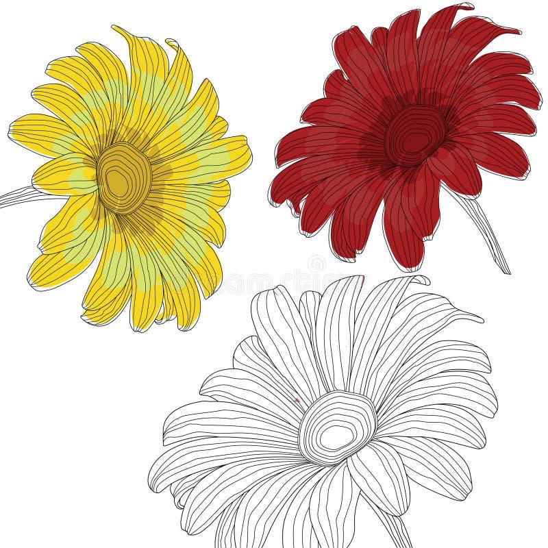 против голубой маргаритки цветет желтый цвет неба стоковые фотографии rf