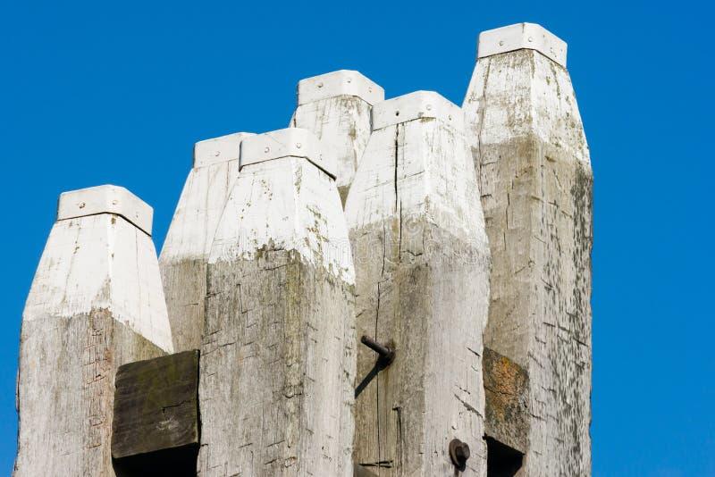против неба 6 голубых палов oaken стоковые изображения