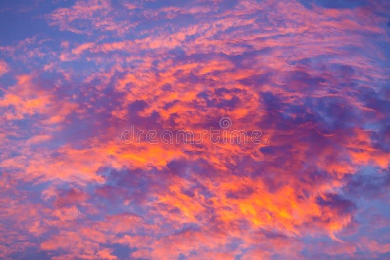 против предпосылки голубые облака field wispy неба природы зеленого цвета травы белое Красное небо на ноче и облаках Красивый и c стоковое изображение