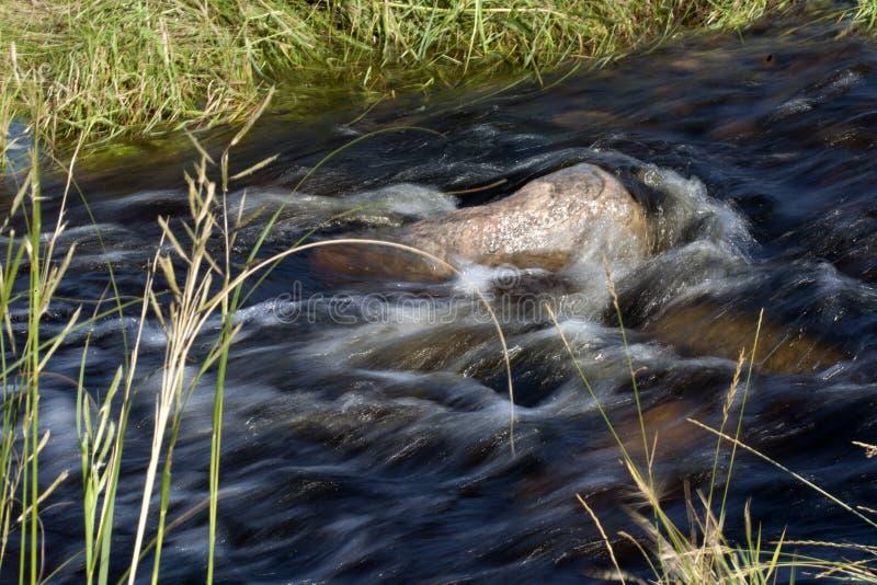 Проточная вода с утесами и травой стоковые фото