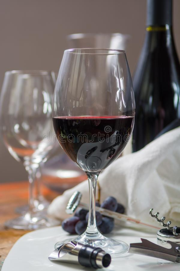 Профессиональное красное событие дегустации вин с высококачественным бокалом стоковое фото rf