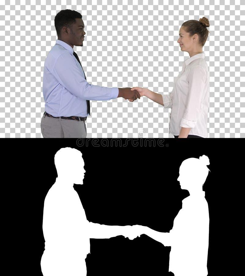 Профессиональные бизнесмены handshaking, канала альфы стоковые фотографии rf