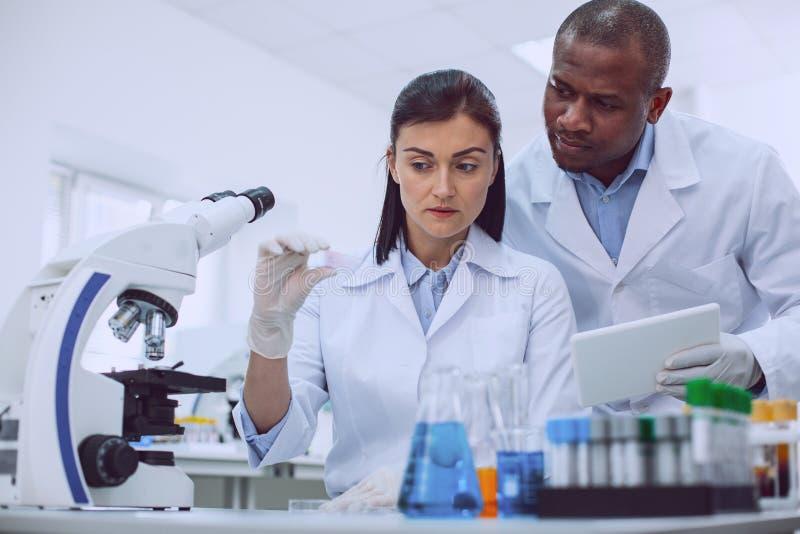 Профессиональные ученые обсуждая исследование в лаборатории стоковое изображение rf