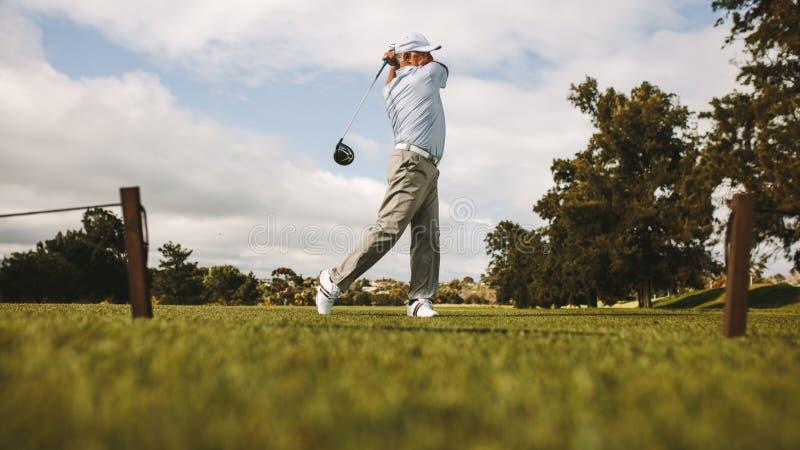 Профессиональный игрок в гольф принимая съемку стоковые изображения rf