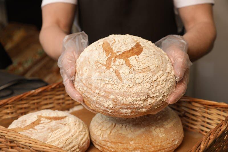 Профессиональный ломоть хлеба удерживания хлебопека над подносом в м стоковые фотографии rf