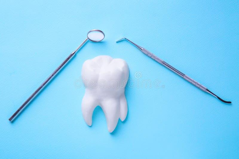 Профессиональный стальной зубоврачебный зонд исследователя аппаратуры с зеркалом над белым светом модели зуба - голубой предпосыл стоковое фото rf