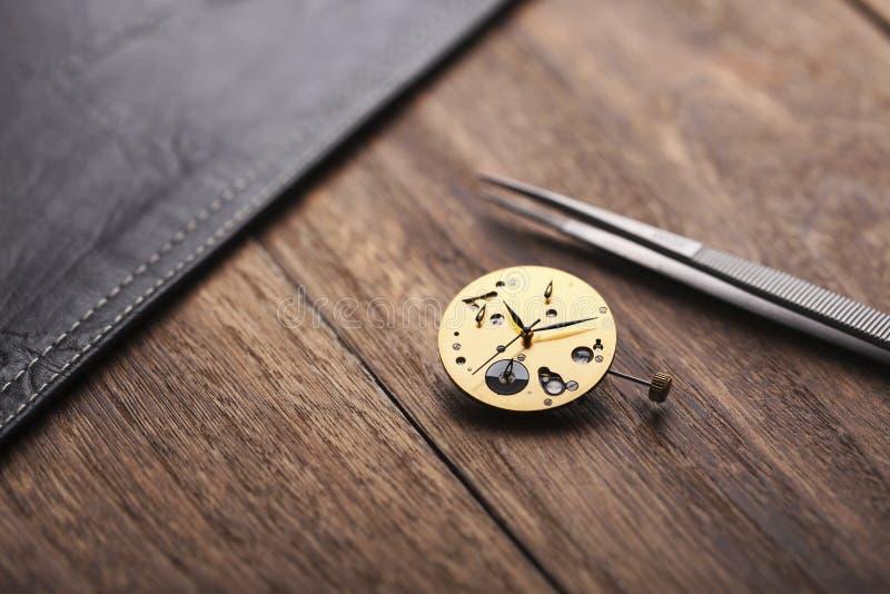 Профессиональный Dia вахты & Timepiece стоковое фото rf
