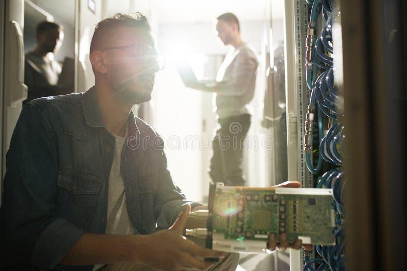 Профессионал ИТ устанавливая сервер лезвия стоковое фото
