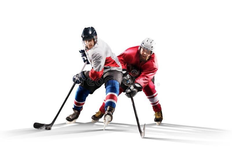 Профессиональный игрок хоккея катаясь на коньках на льде Изолировано в белизне стоковые изображения rf
