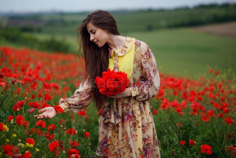 Профиль красивой молодой женщины, длинные волосы, стоя в красном поле цветка мака, красивая предпосылка ландшафта стоковое изображение rf