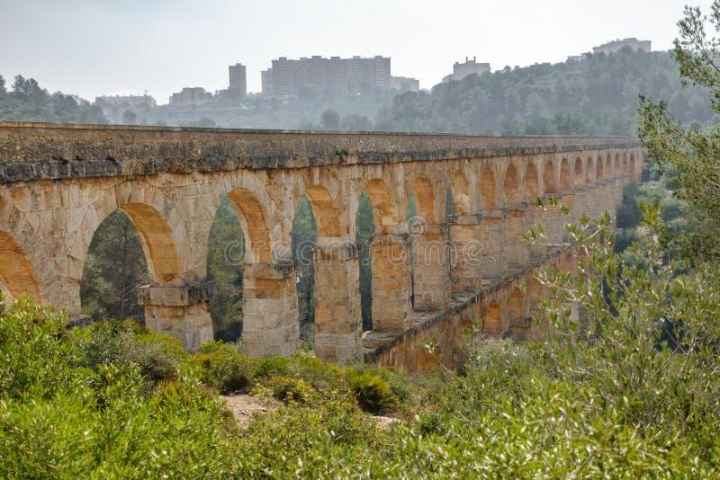 Профиль мост-водовода Ferreres в лесе стоковое изображение rf