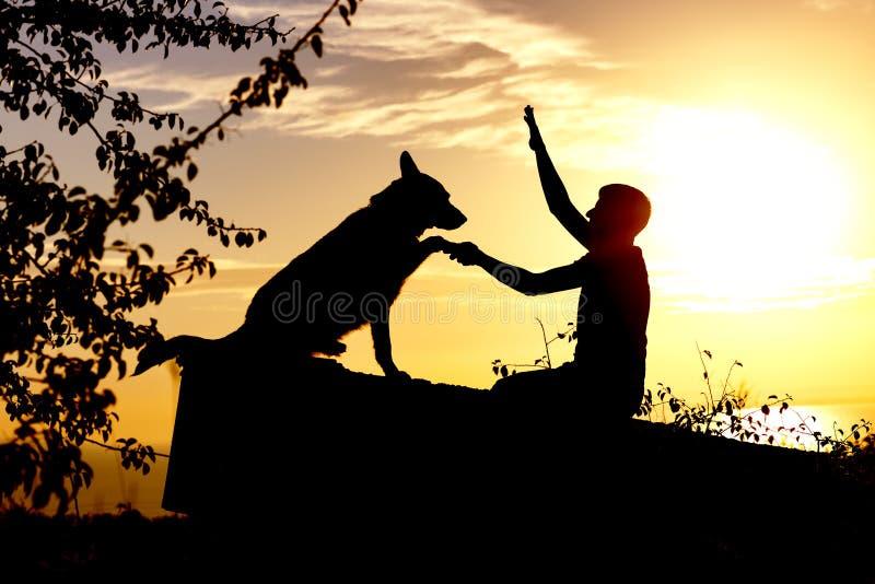 Профиль силуэта hapy человека и собаки сидя и играя на природе, немецкой овчарке мальчика тренируя на заходе солнца в поле, конце стоковое фото