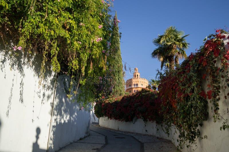 Проход с историческим центром Гранады, Испании стоковые фотографии rf