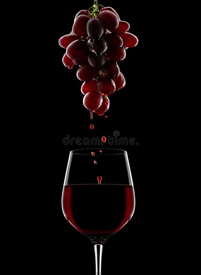 Процесс принятия вина виноградины красные стоковая фотография