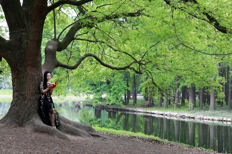 Прочитайте стойку книги под деревом цветения стоковые изображения rf