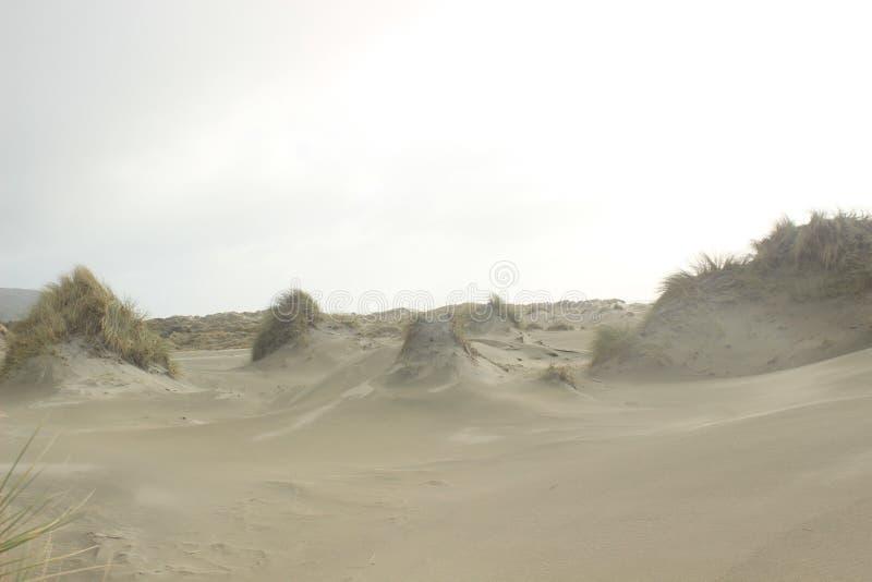 Прощальный вертел, Новая Зеландия стоковая фотография