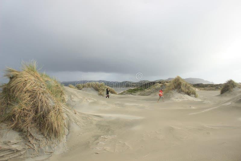 Прощальный вертел, Новая Зеландия стоковое фото