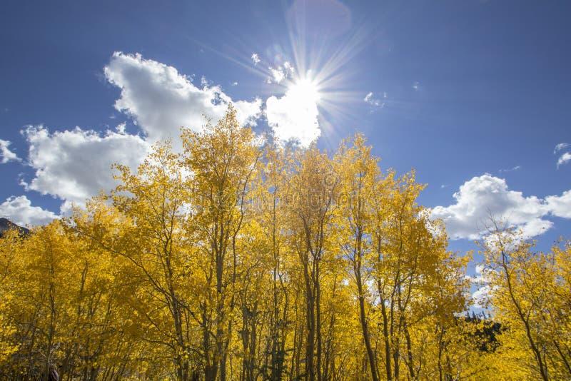 Пролом Солнця осени стоковое фото rf