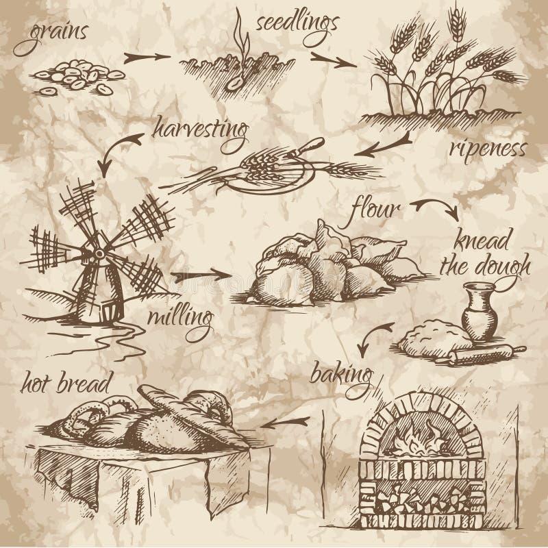 Продукция хлеба бесплатная иллюстрация
