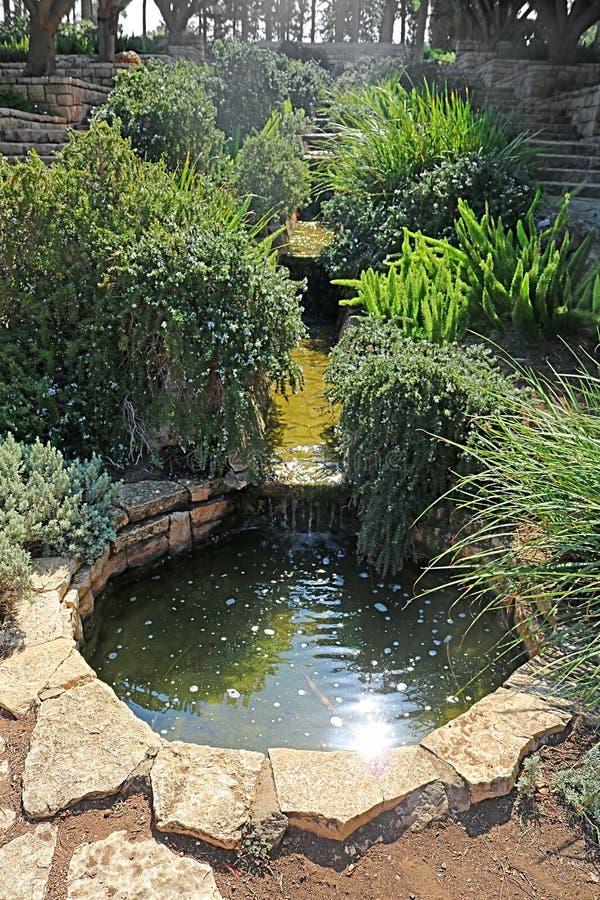 Пруд в парке Ramat Hanadiv, мемориальных садах барона Edmond de Rothschild, Zichron Yaakov, Израиля стоковое изображение rf