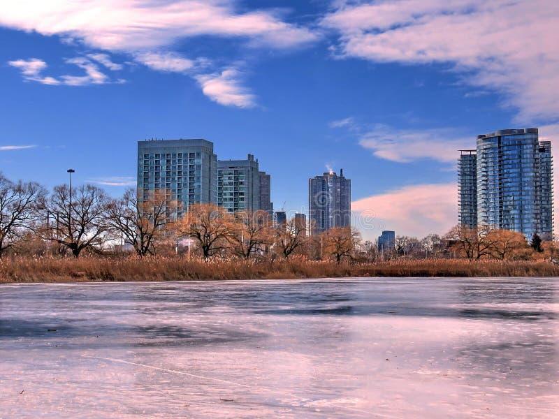 Пруд 2018 зимы парка Торонто высокий стоковое изображение