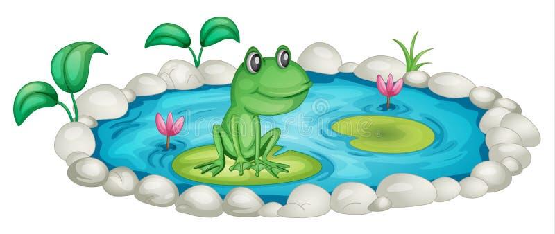 пруд лягушки иллюстрация вектора