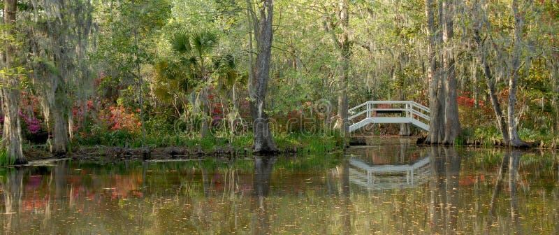 пруд плантации сада стоковые фотографии rf