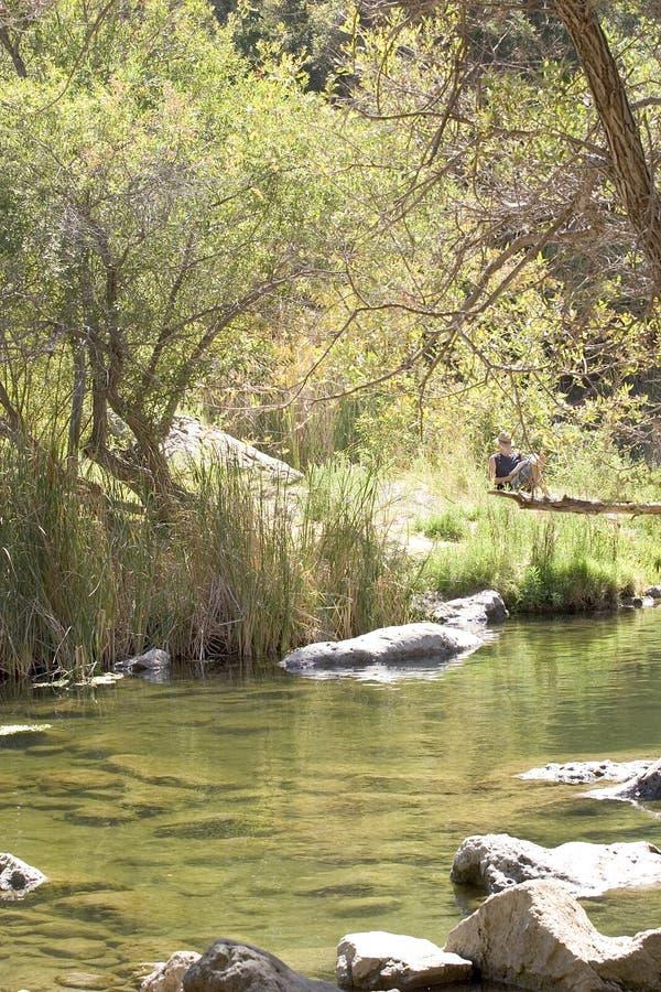 пруд природы ослабляя стоковое изображение rf