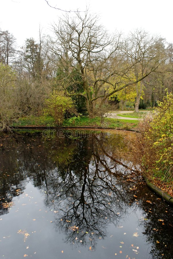 пруд berlin tiergarten стоковые фотографии rf