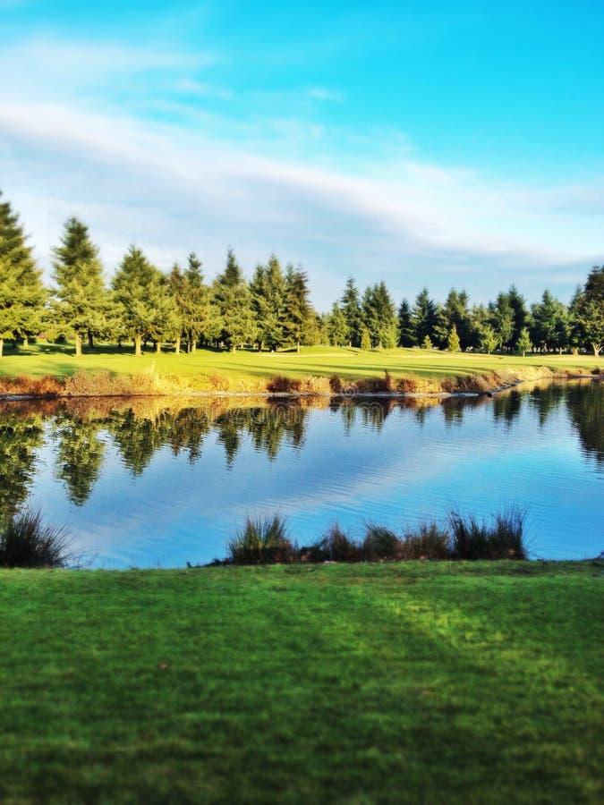 Пруд поля для гольфа стоковая фотография