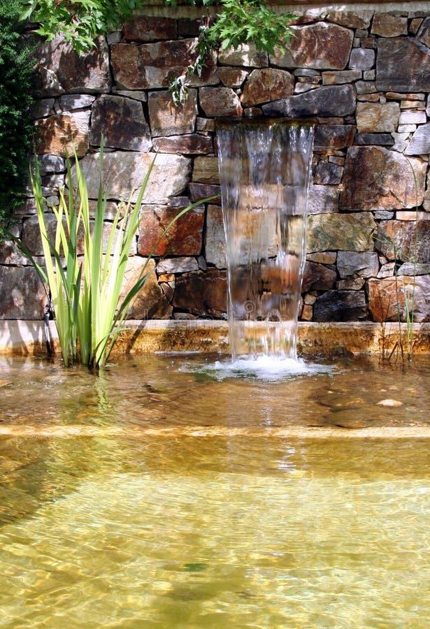 Пруд сада с водопадом стоковые фото