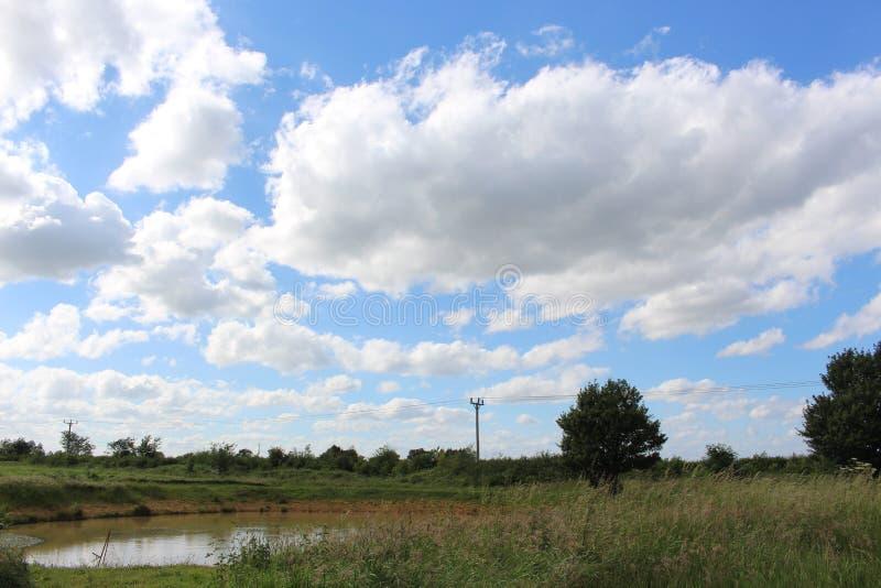 Пруд страны стоковое изображение