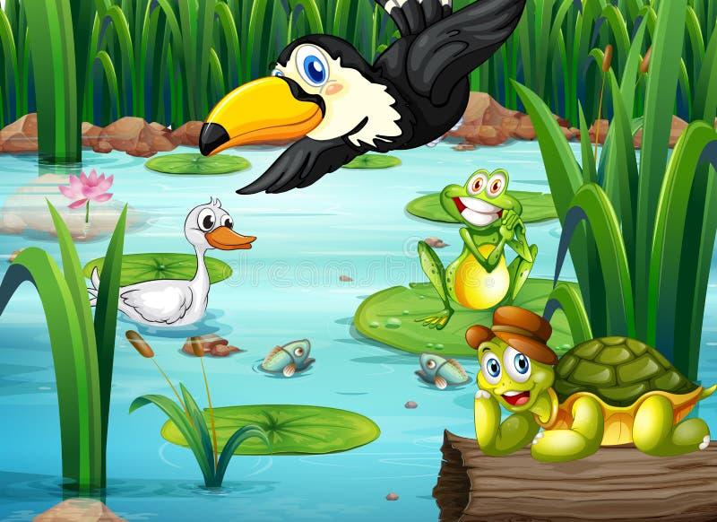 Пруд с животными иллюстрация штока