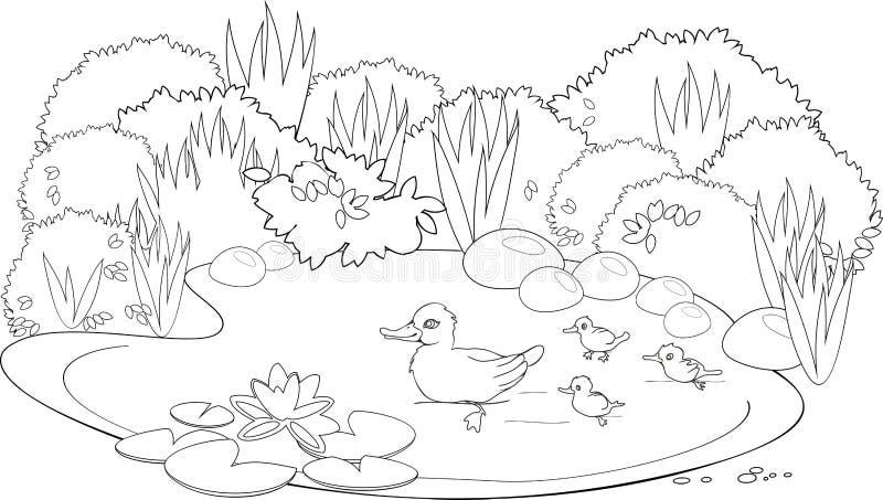 Раскраска утки на пруду