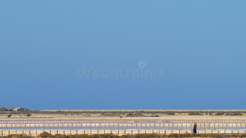 Пруды соли Ibiza стоковое изображение