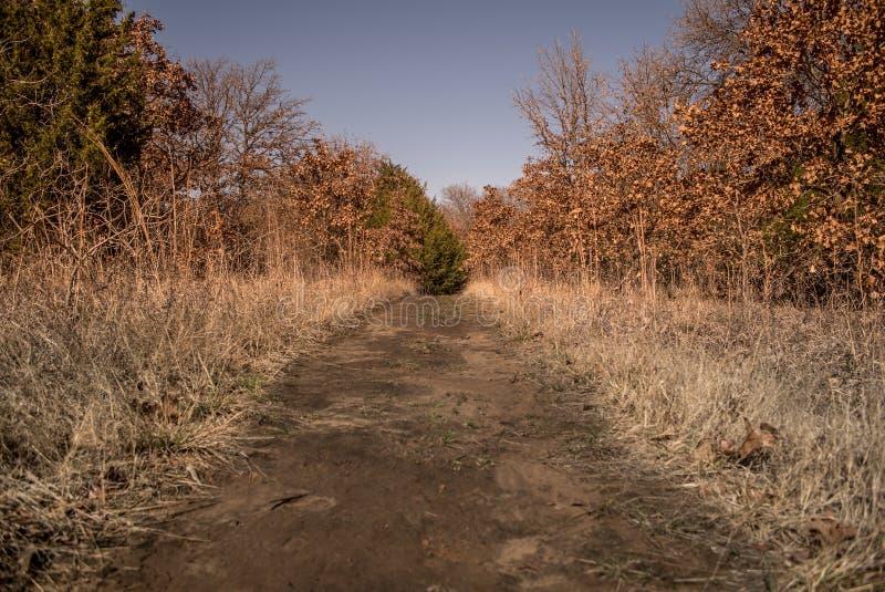 Прямой путь грязи стоковое фото rf
