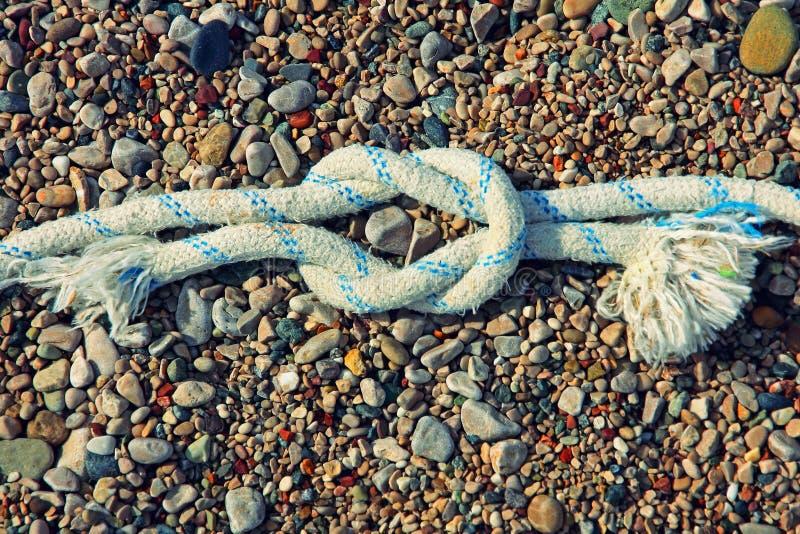 Прямой узел моря на smal яркой предпосылке камешка стоковые изображения