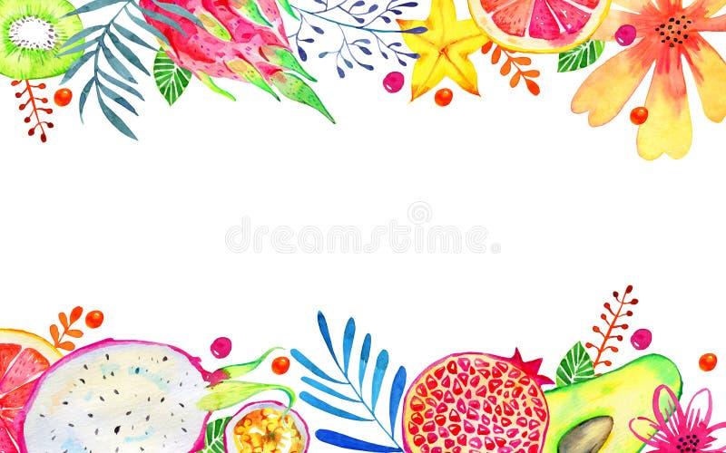 Прямоугольная рамка с экзотическими плодами и декоративными цветками на верхнем и нижнем Цитрус, авокадо, pitahaya, карамбола, an иллюстрация штока