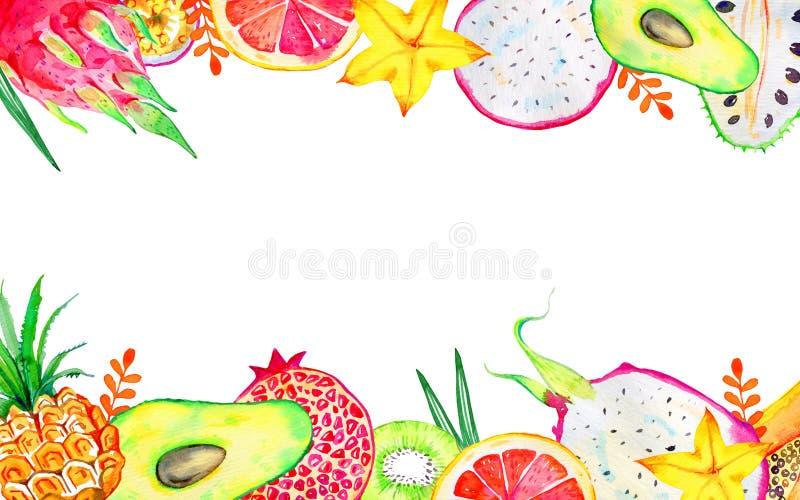 Прямоугольная рамка с экзотическими плодами на верхнем и нижнем Цитрус, авокадо, pitahaya, карамбола, annona, ананас иллюстрация вектора