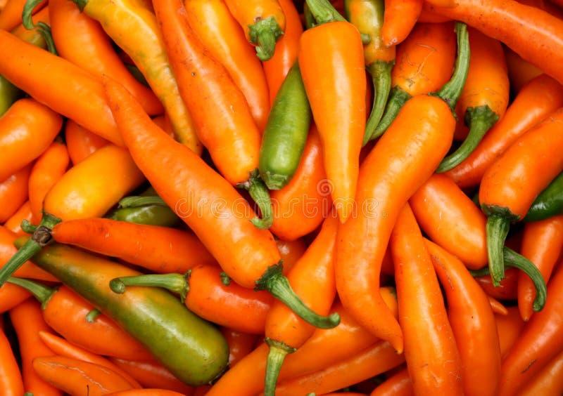 Пряный желтый chili стоковая фотография rf