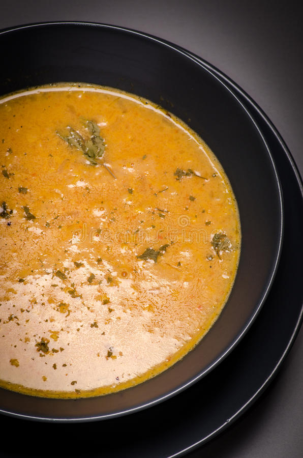 Пряный суп мозоли стоковые изображения