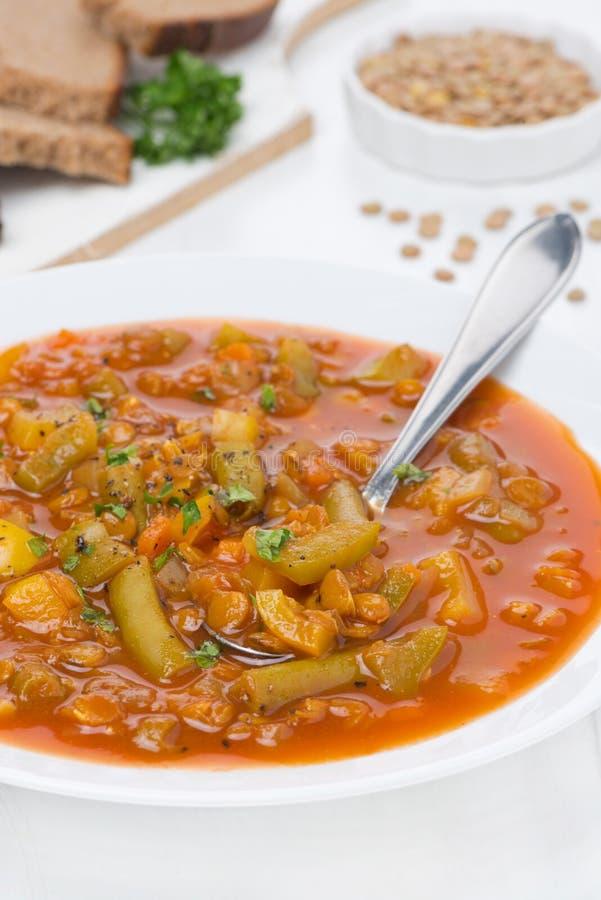Пряный суп томата с зелеными чечевицами и овощами, вертикальными стоковые изображения rf