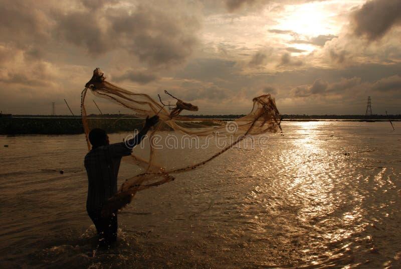 Прятать рыб в тайнике стоковая фотография