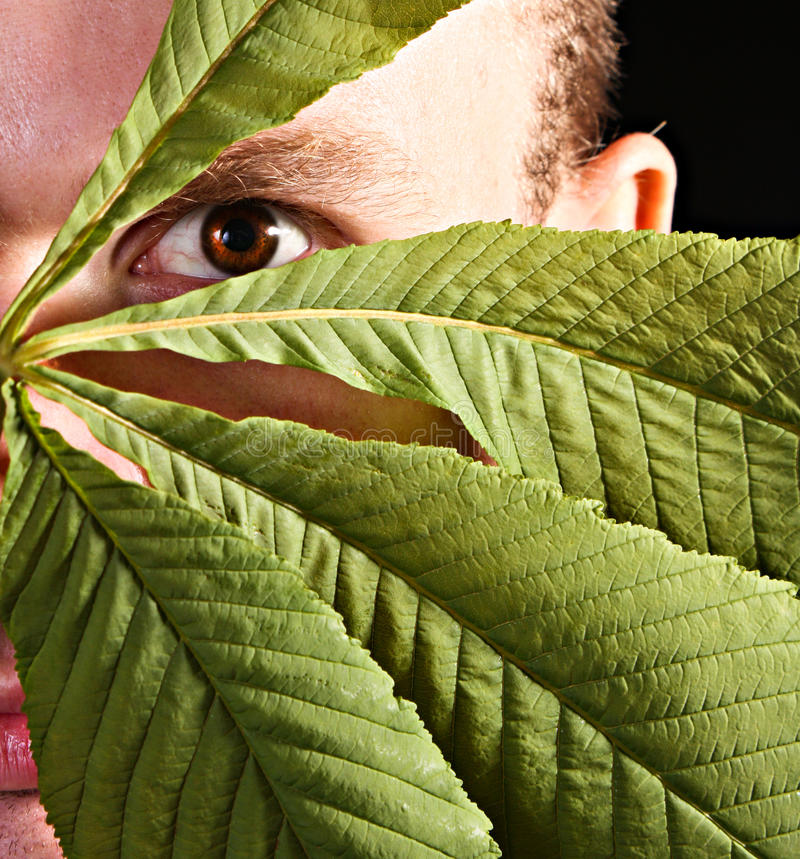пряча человек листьев стоковые изображения