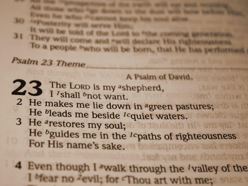 псалем 23 стоковая фотография