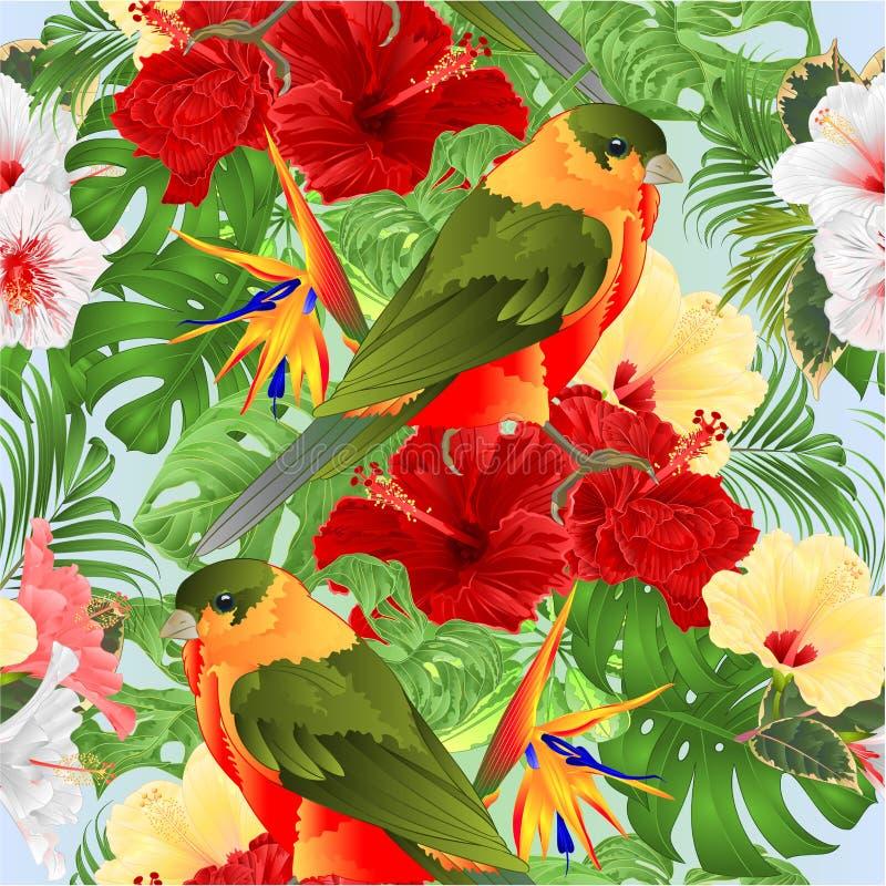 Птица безшовной птицы текстуры тропической милая небольшая смешная и хлев акварели ладони monstera различные гибискус и reginae S иллюстрация вектора