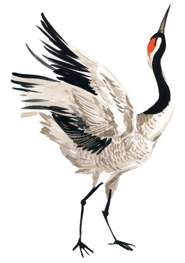 Птица крана акварели бесплатная иллюстрация